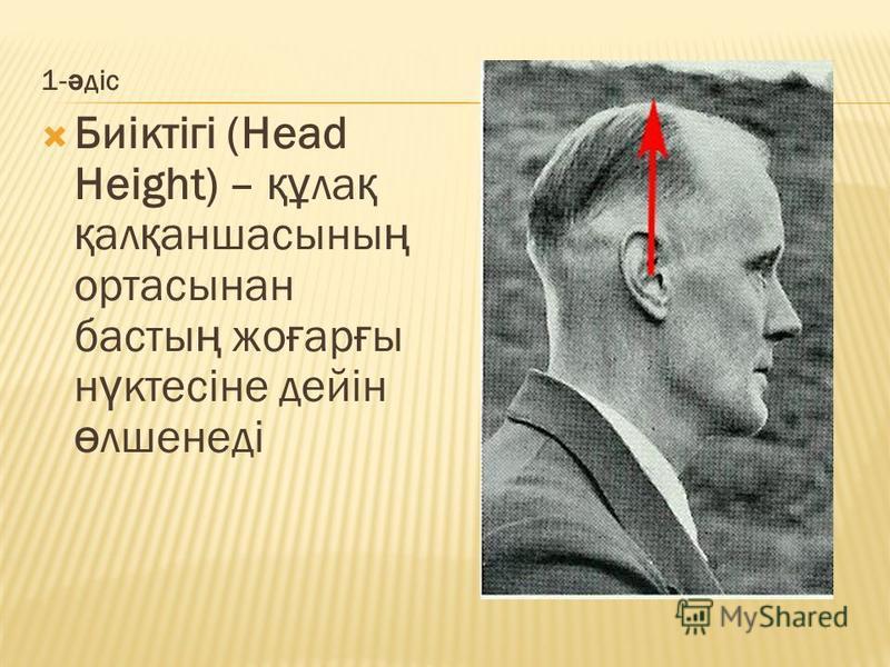 1- ә діс Биіктігі (Head Height) – құ ла қ қ ал қ аншасссыны ң ортасынан басты ң же ғ ар ғ ы н ү ктесіне дейін ө лшенеді