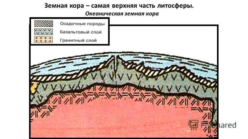 Земная кора – самая верхняя часть литосферы. Океаническая земная кора