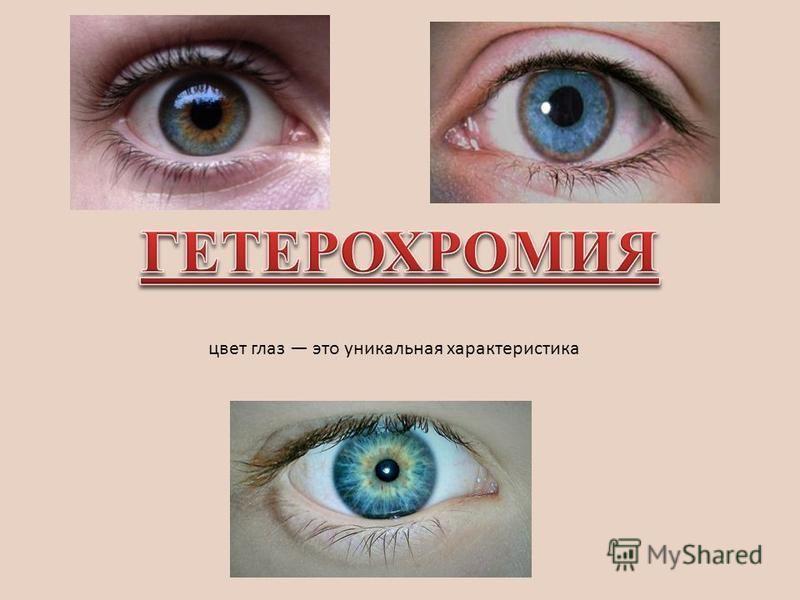 цвет глаз это уникальная характеристика