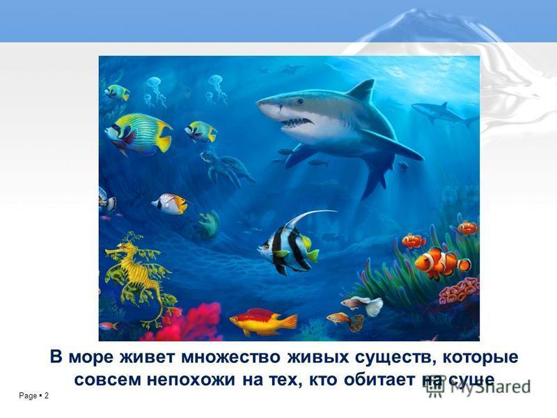 Page 2 В море живет множество живых существ, которые совсем непохожи на тех, кто обитает на суше