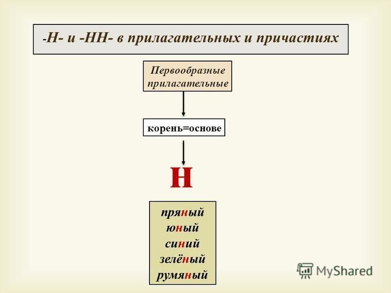 - Н - и - НН - в прилагательных и причастиях корень=основе н Первообразные прилагательные пряный юный соний зелёный румяный