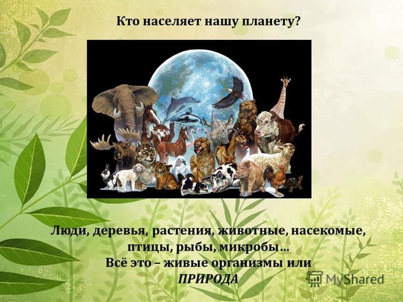 Кто населяет нашу планету? Люди, деревья, растения, животные, насекомые, птицы, рыбы, микробы… Всё это – живые организмы или ПРИРОДА