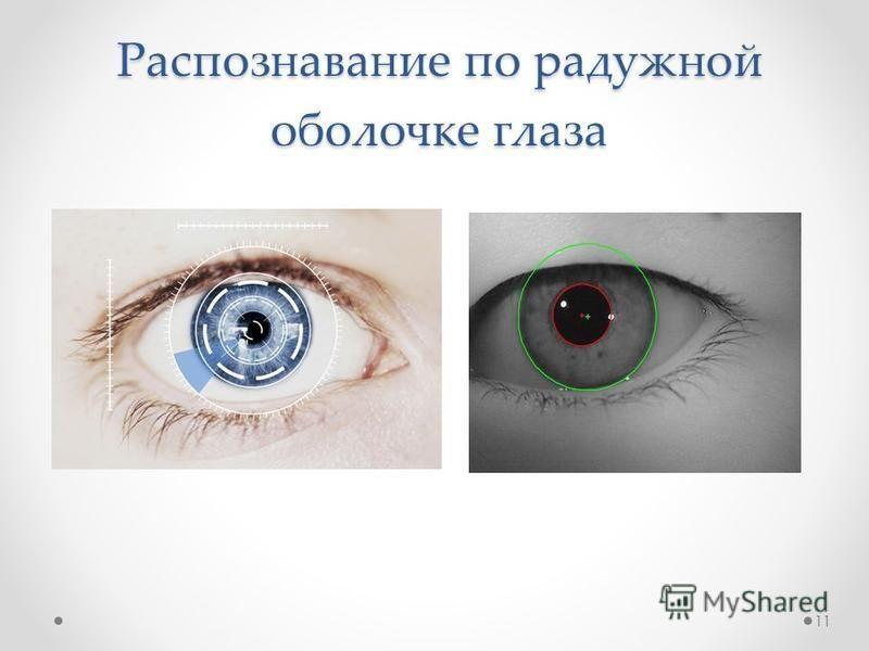 Распознавание по радужной оболочке глаза 11