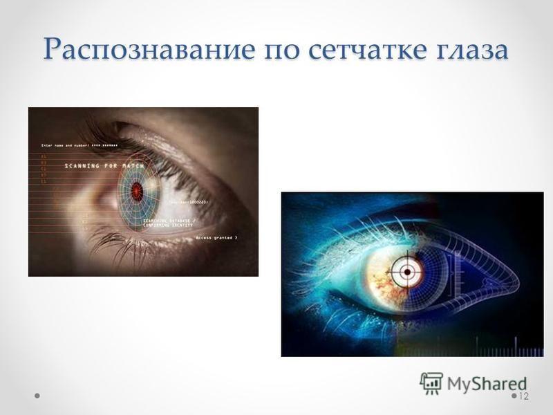 Распознавание по сетчатке глаза 12