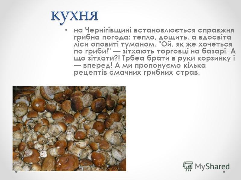 кухня на Чернігівщині встановлюється справжня грибна погода: тепло, дощить, а вдосвіта ліси оповиті туманом.
