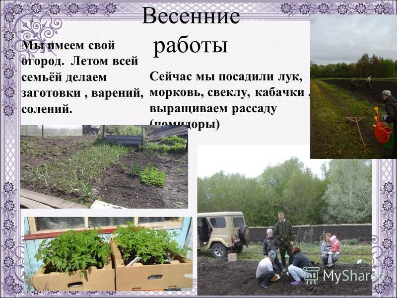 Весенние работы Мы имеем свой огород. Летом всей семьёй делаем заготовки, варений, солений. Сейчас мы посадили лук, морковь, свеклу, кабачки, выращиваем рассаду (помидоры)