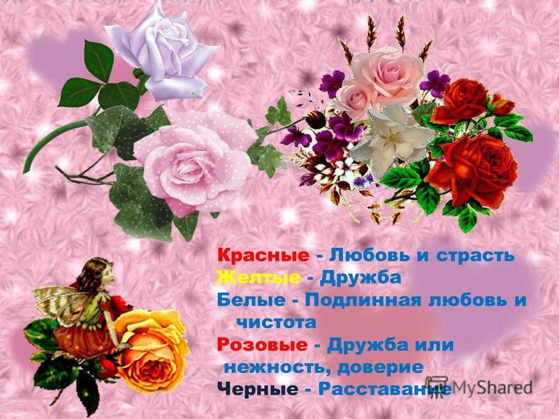 Красные - Любовь и страсть Желтые - Дружба Белые - Подлинная любовь и чистота Розовые - Дружба или нежность, доверие Черные - Расставание