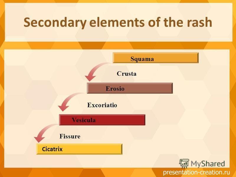 Secondary elements of the rash Erosio Vesicula Squama Cicatrix Crusta Excoriatio Fissure