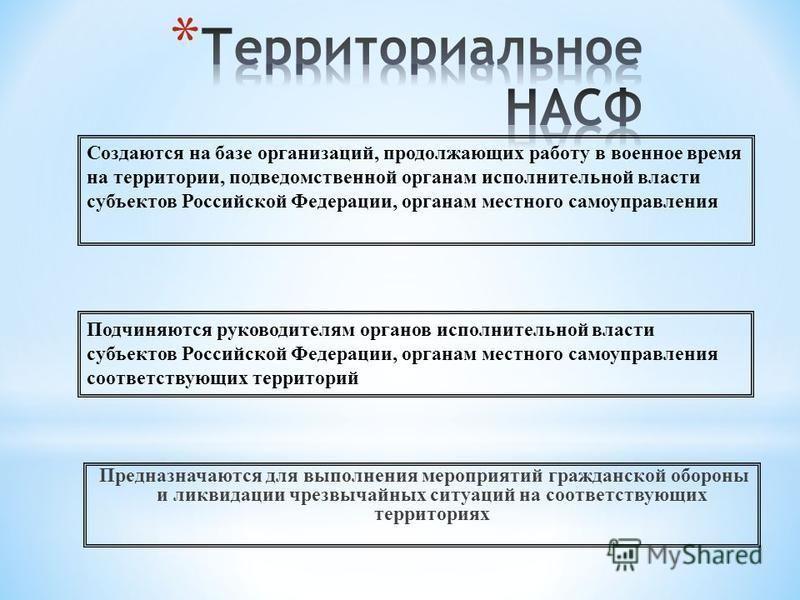 Предназначаются для выполнения мероприятий гражданской обороны и ликвидации чрезвычайных ситуаций на соответствующих территориях Подчиняются руководителям органов исполнительной власти субъектов Российской Федерации, органам местного самоуправления с