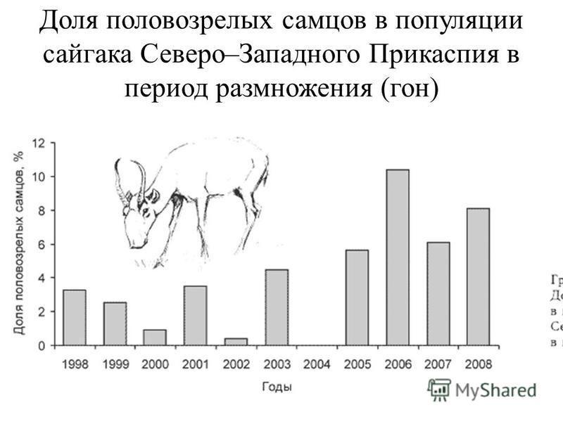 Доля половозрелых самцов в популяции сайгака Северо–Западного Прикаспия в период размножения (гон)