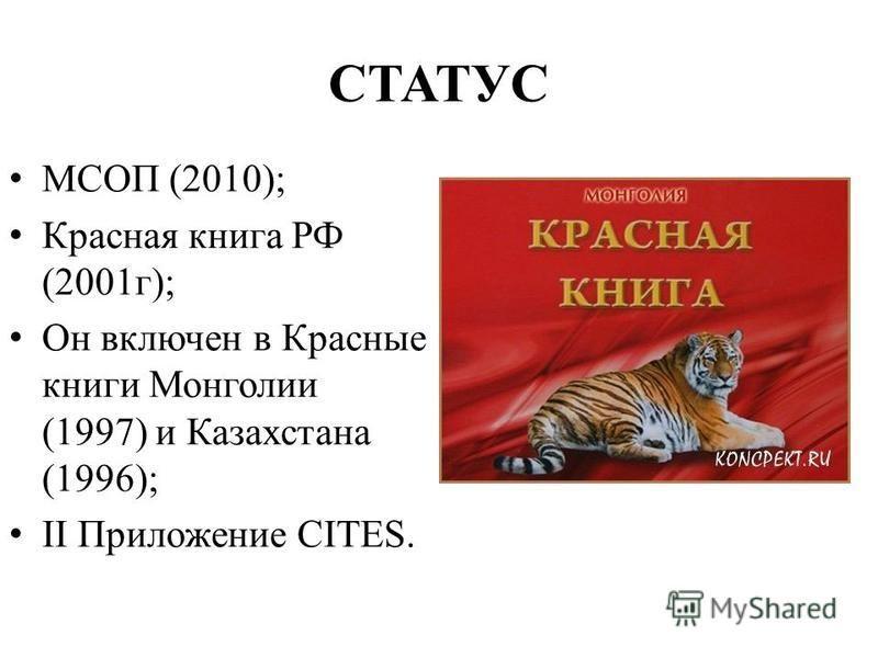 МСОП (2010); Красная книга РФ (2001 г); Он включен в Красные книги Монголии (1997) и Казахстана (1996); II Приложение CITES. СТАТУС