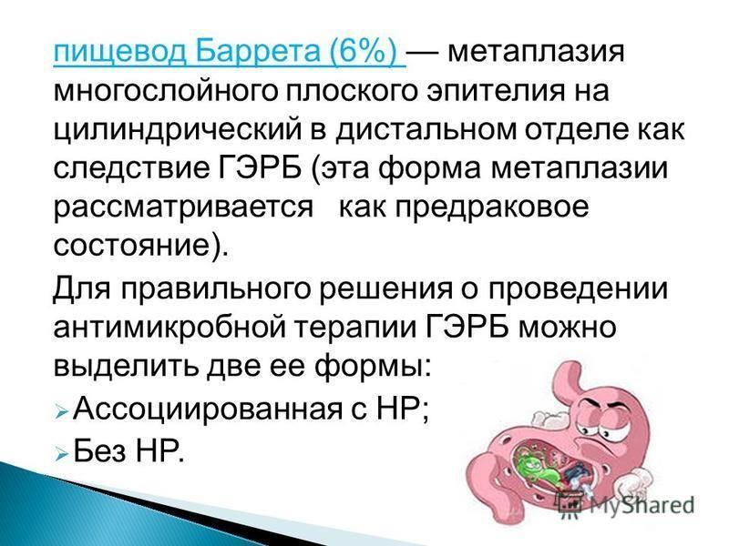 пищевод Баррета (6%) метаплазия многослойного плоского эпителия на цилиндрический в дистальном отделе как следствие ГЭРБ (эта форма метаплазии рассматривается как предраковое состояние). Для правильного решения о проведении антимикробной терапии ГЭРБ