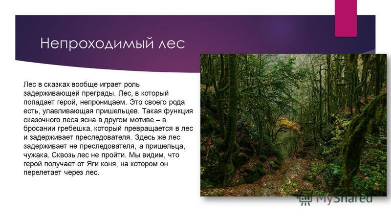 Непроходимый лес Лес в скасках вообще играет роль задерживающей преграды. Лес, в который попадает герой, непроницаем. Это своего рода есть, улавливающая пришельцев. Такая функция сказочного леса ясна в другом мотиве – в бросании гребешка, который пре