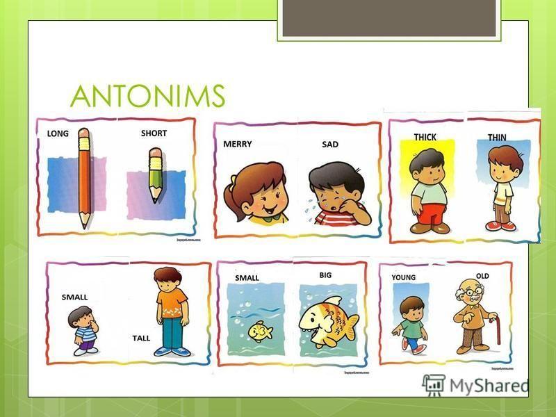 ANTONIMS