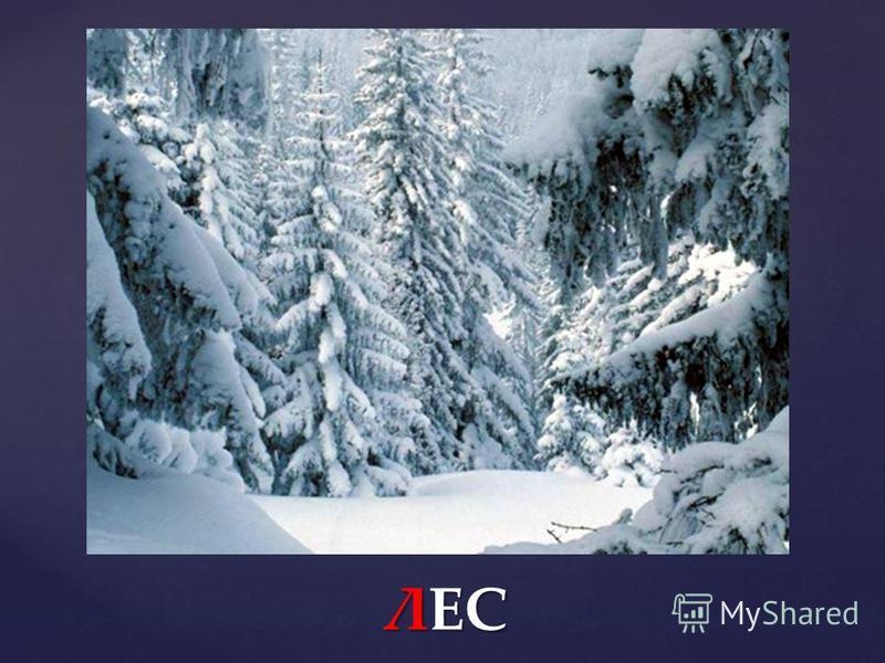 Вальс снежных хлопьев… П.И. Чайковский
