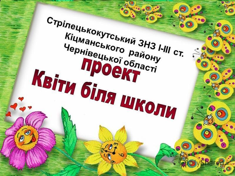 Стрілецькокутський ЗНЗ І-ІІІ ст. Кіцманського району Чернівецької області
