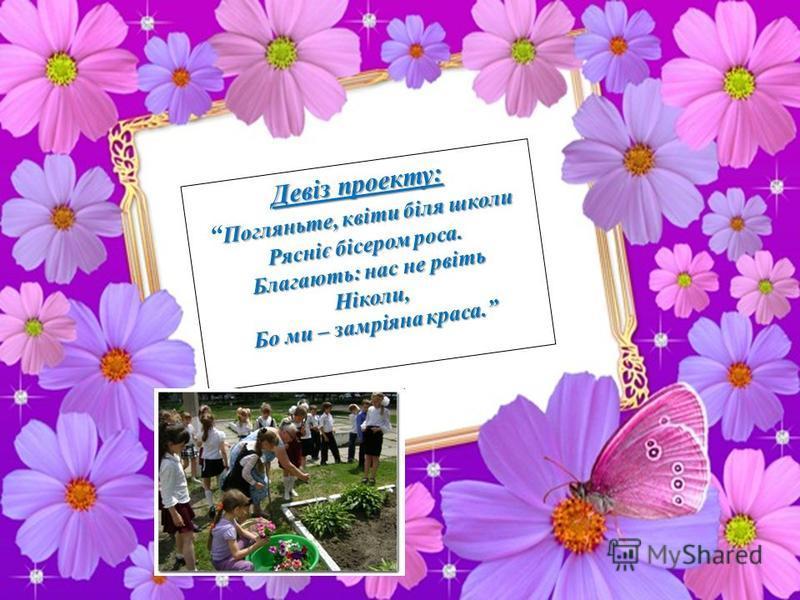 Девіз проекту: Погляньте, квіти біля школи Рясніє бісером роса. Благають: нас не рвіть Ніколи, Бо ми – замріяна краса.