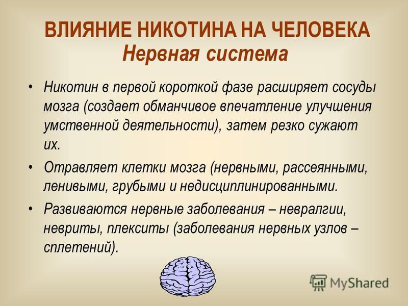 Никотин в первой короткой фазе расширяет сосуды мозга (создает обманчивое впечатление улучшения умственной деятельности), затем резко сужают их. Отравляет клетки мозга (нервными, рассеянными, ленивыми, грубыми и недисциплинированными. Развиваются нер