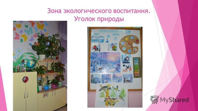 Зона экологического воспитания. Уголок природы