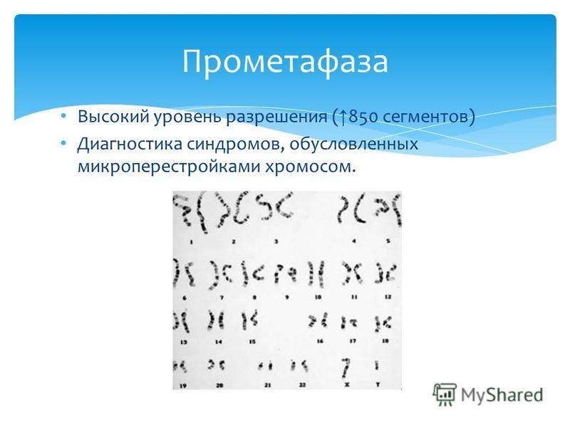 Высокий уровень разрешения ( 850 сегментов) Диагностика синдромов, обусловленных микроперестройками хромосом. Прометафаза