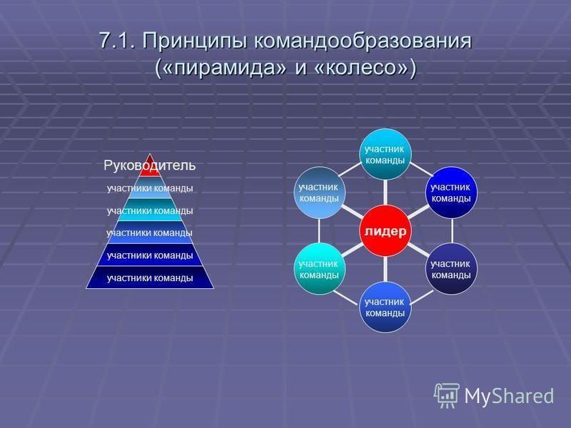 7.1. Принципы командообразования («пирамида» и «колесо») Руководитель участники команды лидер участник команды участник команды участник команды участник команды участник команды участник команды