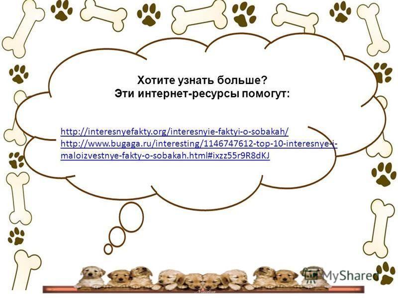 http://interesnyefakty.org/interesnyie-faktyi-o-sobakah/ http://www.bugaga.ru/interesting/1146747612-top-10-interesnye-i- maloizvestnye-fakty-o-sobakah.html#ixzz55r9R8dKJ Хотите узнать больше? Эти интернет-ресурсы помогут: