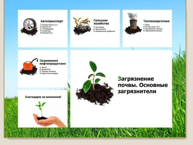 Горно добывающие работы Уничтожение лесов (эрозия ) Удобрения, ядохимикаты (истощение плодородия) Загрязнение тяжелыми Металлами и их соединениями (ртуть, свинец, железо, медь, цинк, марганец). Многократная распашка пастбищ Радиоактивные элементы