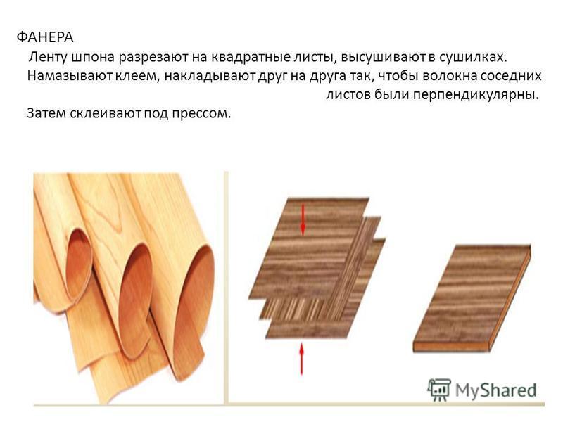 ФАНЕРА Ленту шпона разрезают на квадратные листы, высушивают в сушилках. Намазывают клеем, накладывают друг на друга так, чтобы волокна соседних листов были перпендикулярны. Затем склеивают под прессом.
