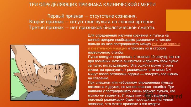 ТРИ ОПРЕДЕЛЯЮЩИХ ПРИЗНАКА КЛИНИЧЕСКОЙ СМЕРТИ Первый признак отсутствие сознания. Второй признак отсутствие пульса на сонной артерии. Третий признак нет признаков биологической смерти. Для определения наличия сознания и пульса на сонной артерии необхо