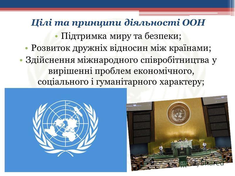 Підтримка миру та безпеки; Розвиток дружніх відносин між країнами; Здійснення міжнародного співробітництва у вирішенні проблем економічного, соціального і гуманітарного характеру; Цілі та принципи діяльності ООН