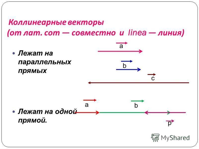 Коллинеарные векторы ( от лат. com совместно и linea линия ) Лежат на параллельных прямых Лежат на одной прямой. a b a b с р