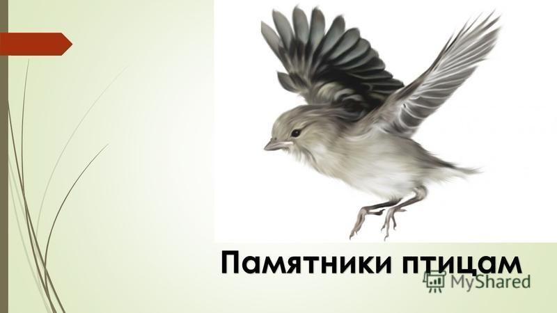 Памятники птицам