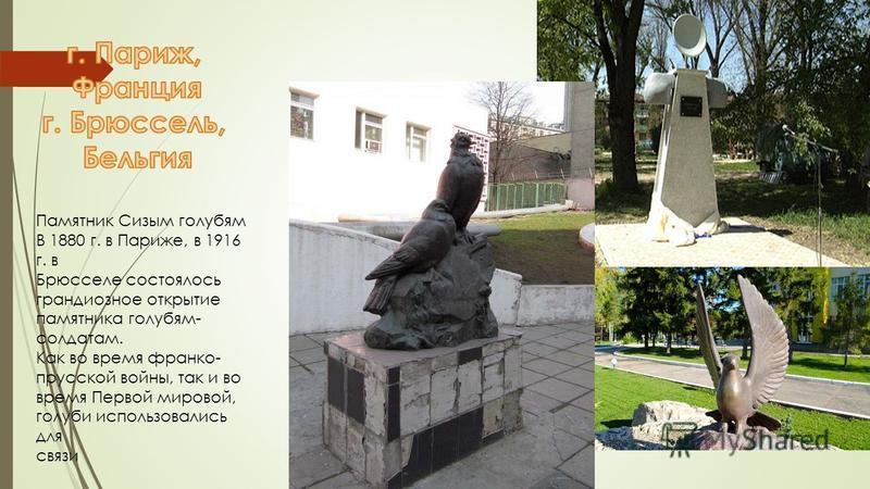 Памятник Сизым голубям В 1880 г. в Париже, в 1916 г. в Брюсселе состоялось грандиозное открытие памятника голубям- солдатам. Как во время франко- прусской войны, так и во время Первой мировой, голуби использовались для связи