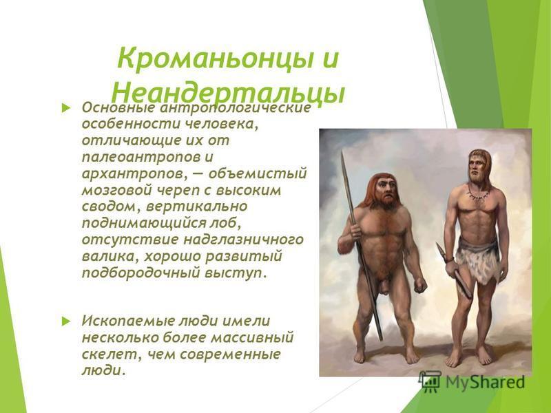 Кроманьонцы и Неандертальцы Основные антропологические особенности человека, отличающие их от палеоантропов и архантропов, объемистый мозговой череп с высоким сводом, вертикально поднимающийся лоб, отсутствие надглазничного валика, хорошо развитый по