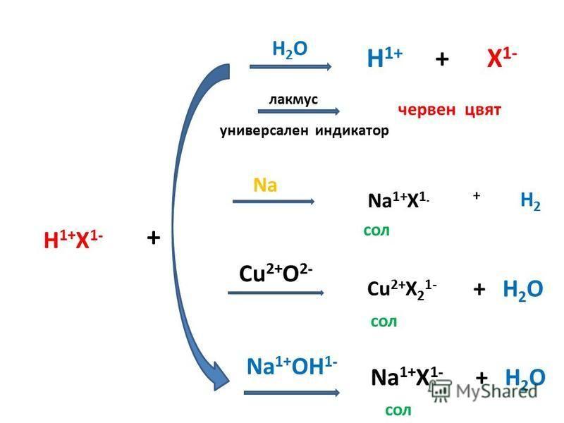 H 1+ X 1- + H2OH2O H 1+ + X 1- лакмус универсален индикатор червен цвят Na Na 1+ X 1 - + H 2 Na 1+ OH 1- Cu 2+ O 2- Na 1+ X 1- + H 2 O Cu 2+ X 2 1- сол