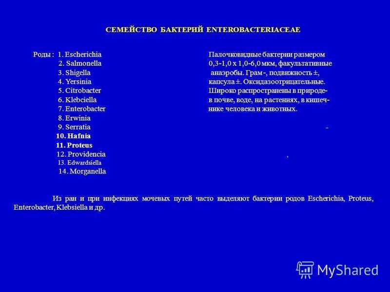 CЕМЕЙСТВО БАКТЕРИЙ ENTEROBACTERIACEAE Роды : 1. Escherichia Палочковидные бактерии размером 2. Salmonella0,3-1,0 х 1,0-6,0 мкм, факультативные 3. Shigella анаэробы. Грам -, подвижность ±, 4. Yersiniaкапсула ±. Оксидазоотрицательные. 5. Citrobacter Ши