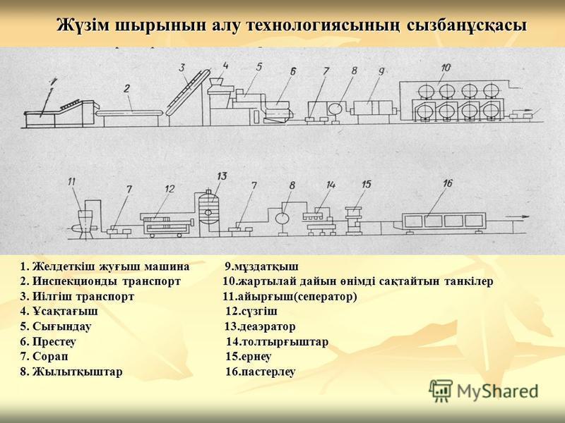 Жүзім шырынын алу технологиясының сызбанұсқасы 1. Желдеткіш жуғыш машина 9.мұздатқыш 2. Инспекционды транспорт 10.жартылай дайын өнімді сақтайтын танкілер 3. Иілгіш транспорт 11.айырғыш(сеператор) 4. Ұсақтағыш 12.сүзгіш 5. Сығындау 13.деаэратор 6. Пр