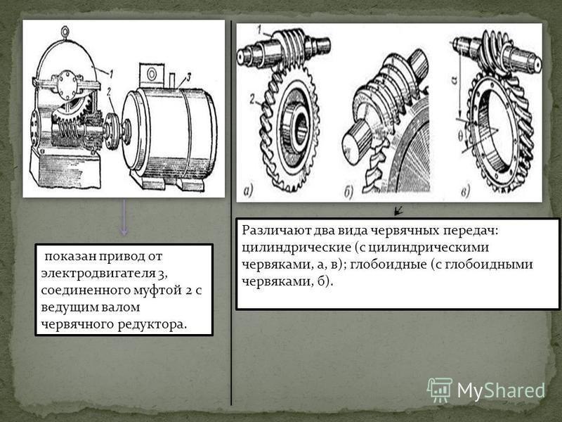 Различают два вида червячных передач: цилиндрические (с цилиндрическими червяками, а, в); глобоидные (с глобоидными червяками, б). показан привод от электродвигателя 3, соединенного муфтой 2 с ведущим валом червячного редуктора.