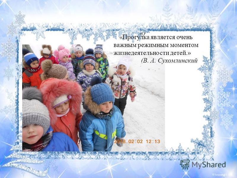 «)«) « Прогулка является очень важным режимным моментом жизнедеятельности детей.» (В. А. Сухомлинский