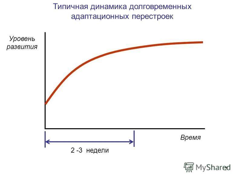 7 Время Уровень развития Типичная динамика долговременных адаптационных перестроек 2 -3 недели