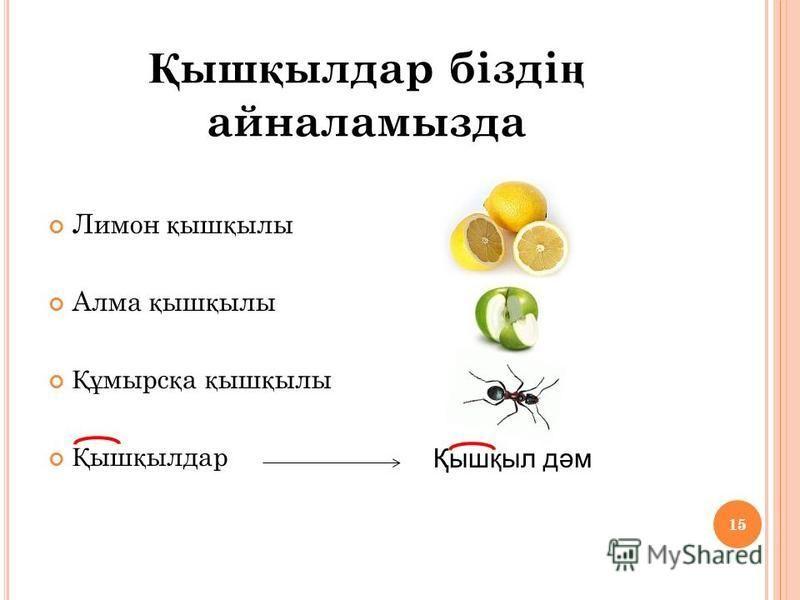 15 Лимон қ ыш қ илы Алма қ ыш қ илы Құ марс қ а қ ыш қ илы Қ ыш қ бдбылдар Қышқббыл дәм 15 Қ ыш қ бдбылдар бізді ң айналамызда