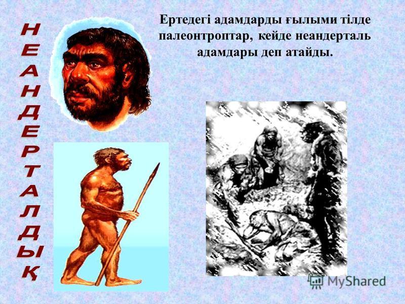 Ежелгі адамдар (архантроптар)