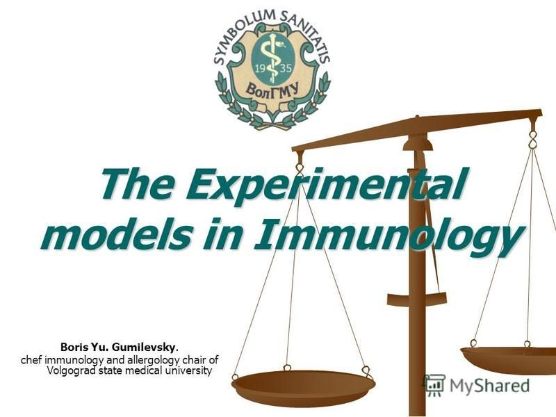Boris Yu. Gumilevsky. chef immunology and allergology chair of Volgograd state medical university The Experimental models in Immunology