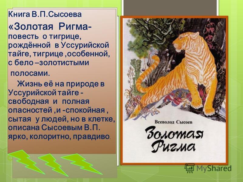 о Книга В.П.Сысоева «Золотая Ригма- повесть о тигрице, рождённой в Уссурийской тайге, тигрице,особенной, с бело –золотистыми полосами. Жизнь её на природе в Уссурийской тайге - свободная и полная опасностей,и -спокойная, сытая у людей, но в клетке, о