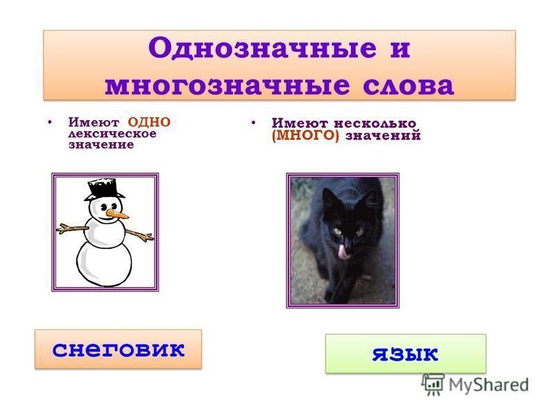 Однозначные и многозначные слова Имеют ОДНО лексическое значение Имеют несколько (МНОГО) значений снеговик язык