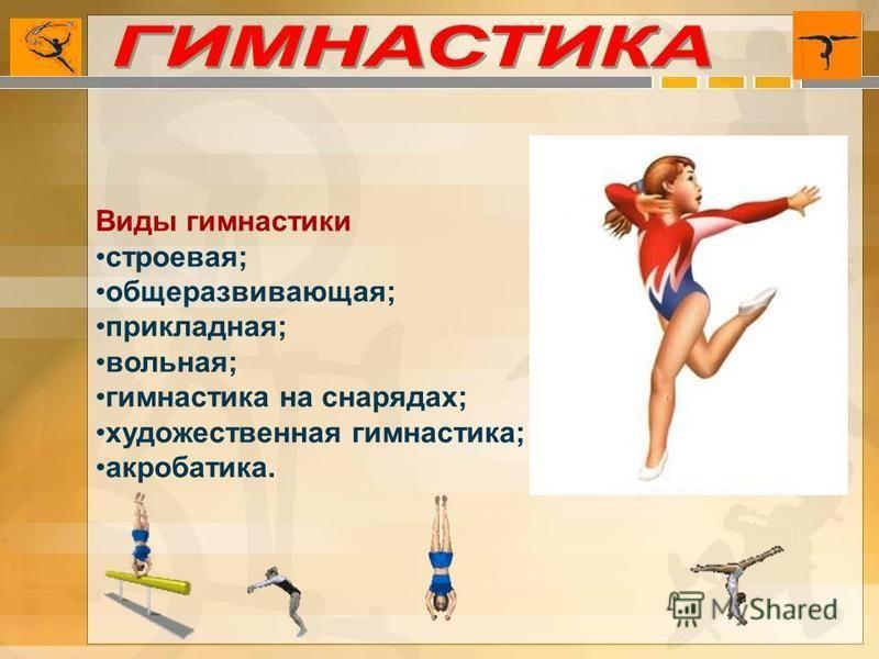 Виды гимнастики строевая; общеразвивающая; прикладная; вольная; гимнастика на снарядах; художественная гимнастика; акробатика.