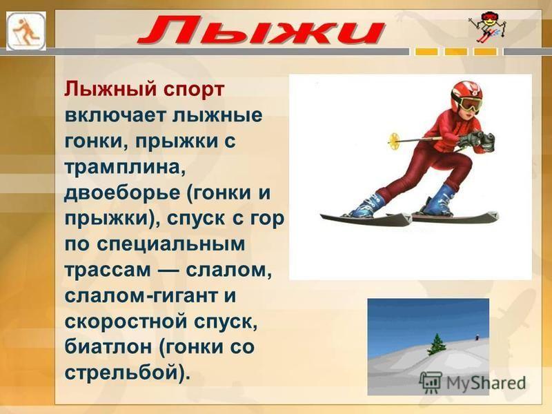Лыжный спорт включает лыжные гонки, прыжки с трамплина, двоеборье (гонки и прыжки), спуск с гор по специальным трассам слалом, слалом-гигант и скоростной спуск, биатлон (гонки со стрельбой).