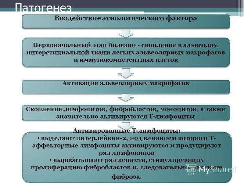 Патогенез Воздействие этиологического фактора Первоначальный этап болезни - скопление в альвеолах, интерстициальной ткани легких альвеолярных макрофагов и иммунокомпетентных клеток Активация альвеолярных макрофагов Скопление лимфоцитов, фибробластов,