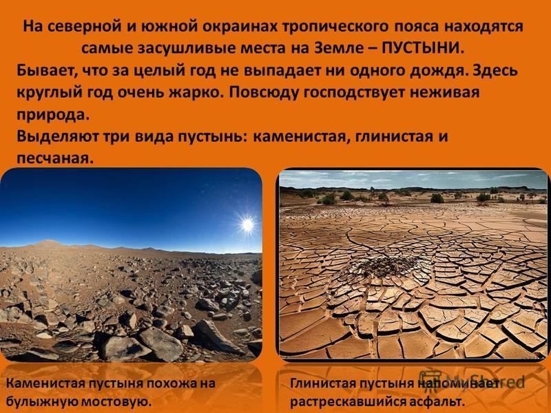 На северной и южной окраинах тропического пояса находятся самые засушливые места на Земле – ПУСТЫНИ. Бывает, что за целый год не выпадает ни одного дождя. Здесь круглый год очень жарко. Повсюду господствует неживая природа. Выделяют три вида пустынь: