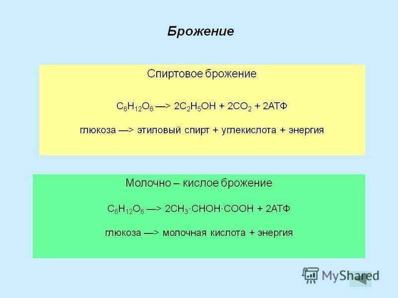 ПВК молочная кислота этиловый спирт H H Брожение H Н